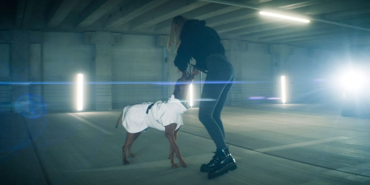 Augsburg Filmproduktion DOGANDLIVING Reflektierender Hunderegenmantel