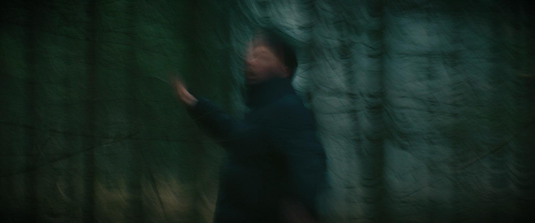 Musikvideo zum Lied Rosengarten
