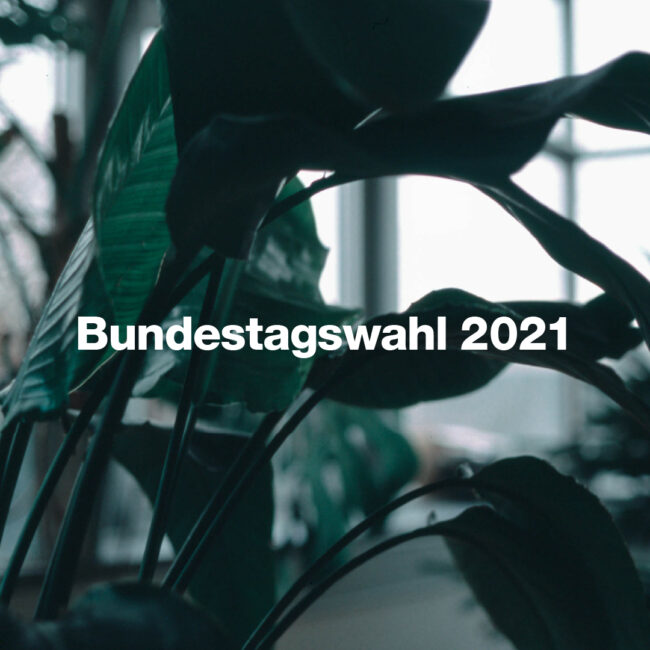 Bundestagswahl 2021 7 Online Tools für die Bundestagswahl